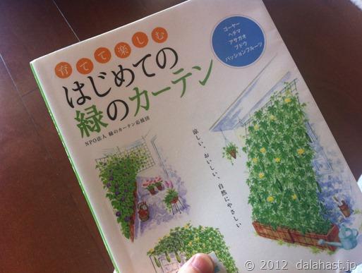 緑のカーテン計画