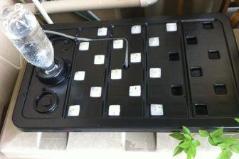 安価な水耕栽培キット「水畑」を買ってみました