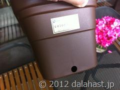 自作水耕装置4
