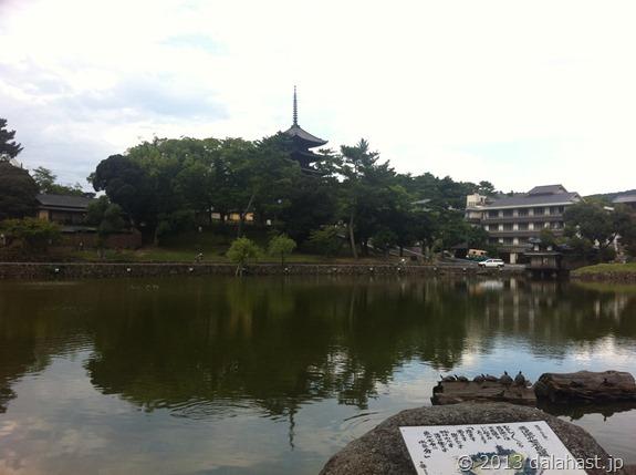 猿沢池と興福寺五重塔