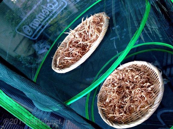 体に効くごぼう茶の作り方と効能