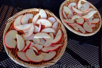ドライフルーツづくり 自家製干しリンゴ仕込み中