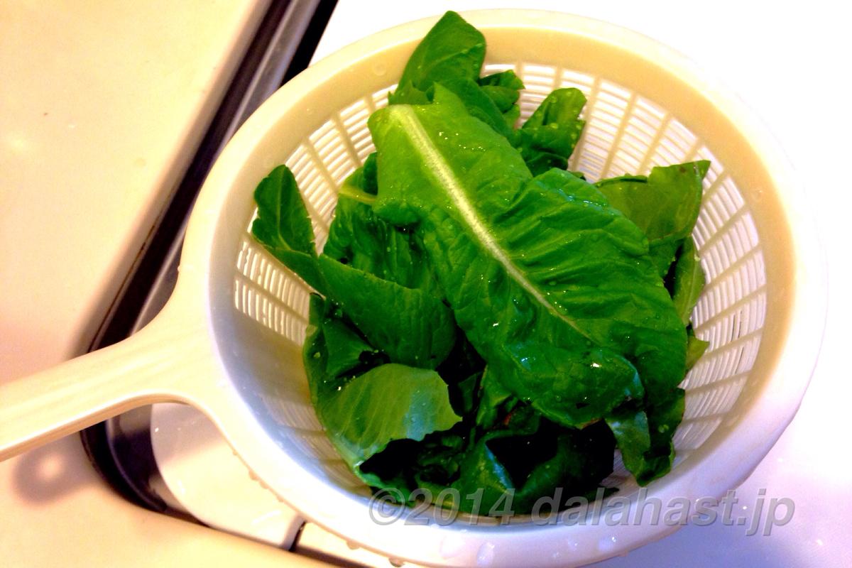 最後の収穫サラダ菜