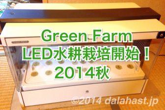 Green Farm 秋のLED水耕栽培開始しました