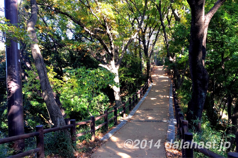 生田緑地散策