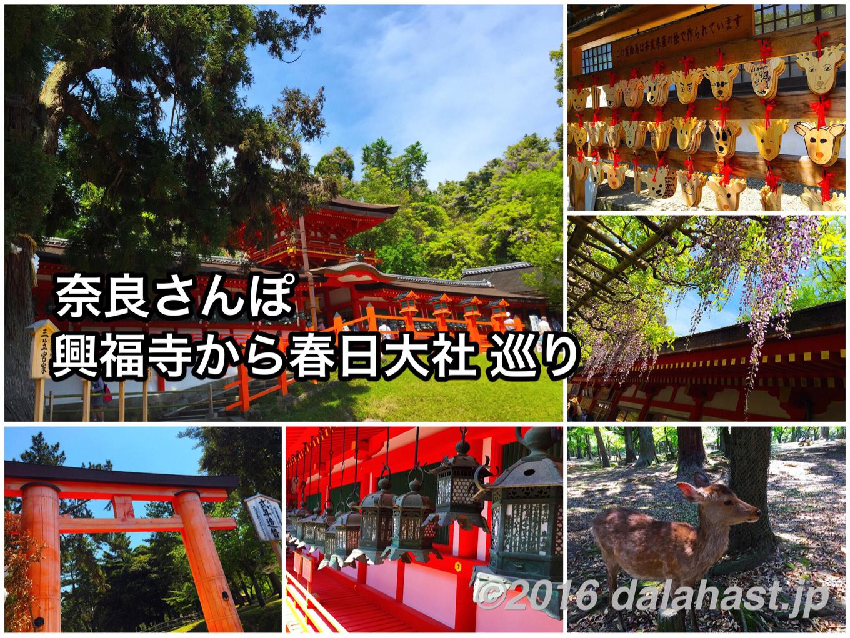 【奈良】奈良さんぽ 興福寺~春日大社へ 古の王朝にタイムトリップする