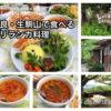 【奈良・生駒】森のレストラン ラッキーガーデン 生駒山麓の大自然の中でいただくスリランカ料理