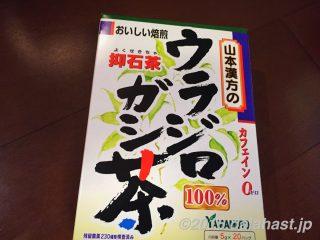 【尿管結石に効く!】ウラジロガシ茶を飲んで結石体質を改善!痛くて辛い結石を溶かして流す抑石茶