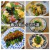 わが家の定番 春の筍(たけのこ)料理5選