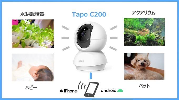 TapoC200活用事例